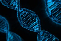 genoma.jpg