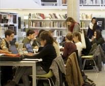 Biblioteques_arbre.jpg