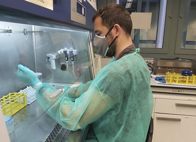 Laboratori de Plasmes per a Aplicacions Biomèdiques