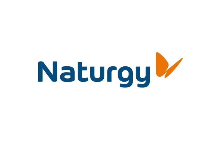 Logo Naturgy