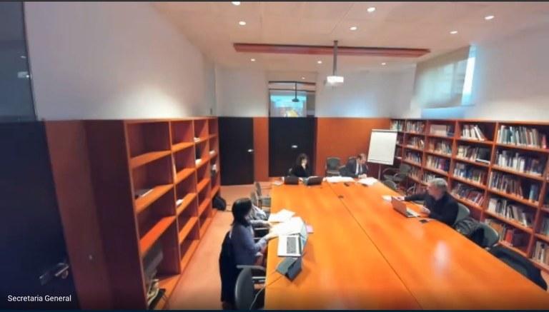 El Consejo de Gobierno se reúne mediante videoconferencia