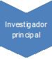 Investigador principal 2
