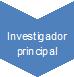 Investigador principal